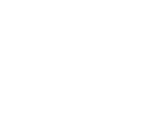 Stichting Grote Broer